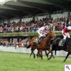 I cavalli tornano a correre all�ippodromo di Montecatini Terme