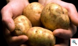 La Grecia reagisce con le Patate