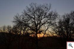 Tramonto solstizio d'estate al Parco del Treja